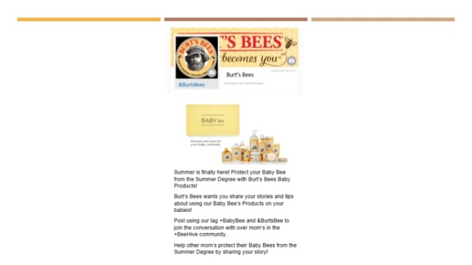 JOUR4530 Final Pitch Burt's Bees Page 14